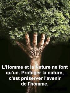 arbre homme